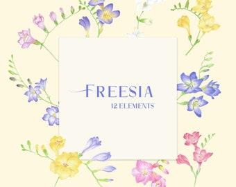 Freesia Clipart, Digital Freesia Illustration, Freesia png, Freesia bouquet, Botanical wreath, Flower elements, Wedding DIY invites