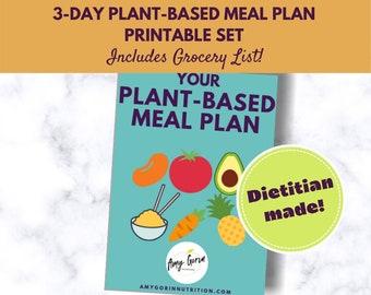 Plant Based Meal Plan  + Grocery List   Breakfast, Lunch, Dinner, Snacks + Dessert Printable   Vegetarian Meal Planner   Vegan Shopping List