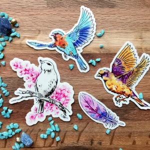 Vinyl Sticker Nature Art Colourful Whimsical Bird Stickers for Laptop Decals Journaling and Planners Sticker pack Birds