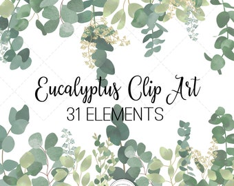 Watercolor Eucalyptus Leaves, Watercolor Eucalyptus Greenery, Foliage Clip Art , Leaves Clip Art, Commercial Use, Instant Download, PNG