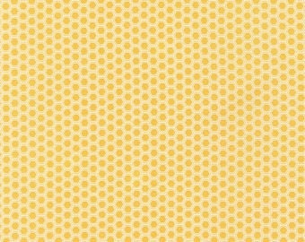 Robert Kaufman Bees Knees - Honey Combs Honey, Fat Quarters, 1/2 Yard, Yard, 100% Cotton, Great for Quilting, Sewing and DIY Crafts