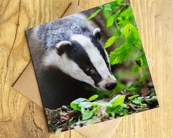 "Badger Card, Badger Greeting Card, blank inside, 6"" x 6""."