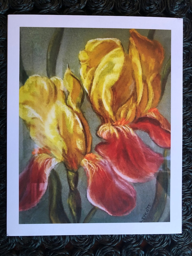 German BEARDED IRIS by Catherine Ludwig Donleycott Giclee Limited Edition Fine Art Floral Archival Wall Art