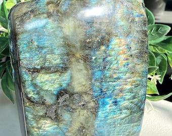 "Labradorite Crystal XL Free Form - 7""h x 4""w - Incredible Blue & Green Flash - Transformation, Cosmic Destiny, Curiosity"