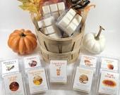 Fall Wax Melts, Strong Scented Wax Melts, Autumn Wax Melts, Wax Melt Cubes for Warmer