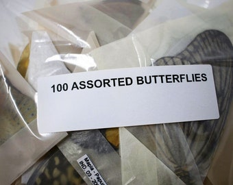 Unmounted Butterflies