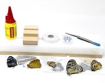 Entomology Equipment