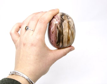 Fossilised Wood Polished Paperweight 400g