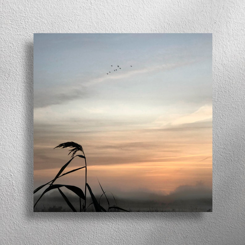 OVER-FLIGHTS 40 x 40 cm square wall photo for living room image 0