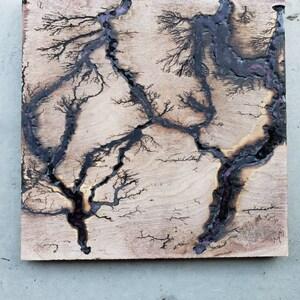 Leikeli47 Lichtenberg wall art