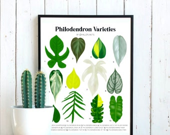 Philodendron Varieties - Plant Identification Chart - Digital Download