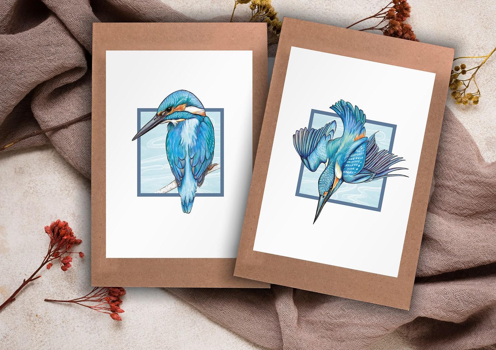2 pack kingfisher greeting cards stellaalexanderart  etsy