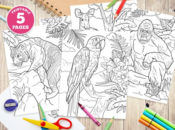 5 Printable Digital Coloring Pages for Kids jungle animals