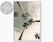 Palm Tree Print, Tree Art, Florida Print, Tropical Print, Palm Photography, Palm Trees Wall Art, Large Poster Print, Minimalist Print