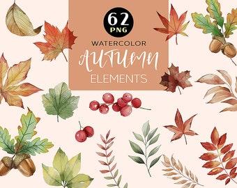 Watercolor Fall Leaves Clipart, Autumn Clipart, Watercolor Clipart, Fall Leaf Clipart, Thanksgiving, Halloween, Leaf PNG, Oak, Autumn Decor