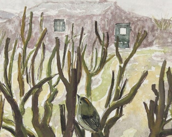 Garden Goldcrest greetings card. Square 12x12cm. Blank inside. Scotland. Wildlife. Plein air painting. 100% recycled card. Isle of May