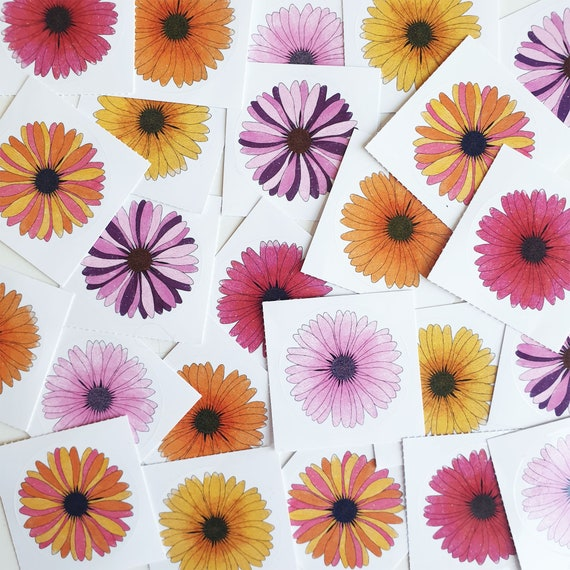 Daisy Flower Sticker Pack 10 Colourful Round Stickers