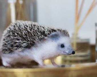 Hedgehog. Felt hedgehog. Dry wool felting, soft hedgehog sculpture, realistic animal. A stuffed hedgehog.