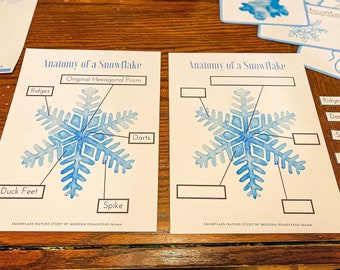 Anatomy of a Snowflake   Mini Snowflake Winter Homeschool Study for Pre-K, Kindergarten, Elementary Kids