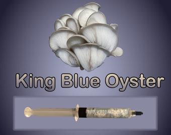King Blue Oyster Mushroom Liquid Culture