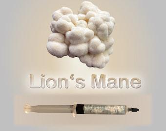 Lions Mane Liquid Culture