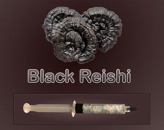 Black Reishi Liquid Culture