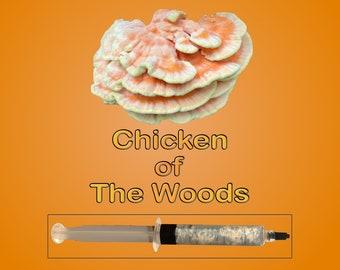 Chicken of The Woods Mushroom Liquid Culture