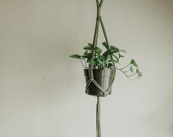 Avocado Green Macrame Plant Hanger | Large Hanging Plant Holder | Recycled Cotton Green Macrame Wall Hanging | Boho Decor Fiber Art | JANE