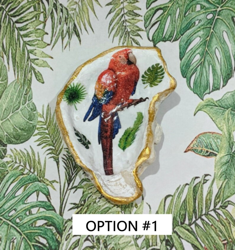 Change Dish Hostess Gift Rescue Donation-Ring Dish Key Dish Parrot Decorative Decoupage Oyster Shell