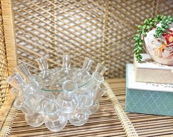 Vintage 18 clear glass vase cluster propagation station