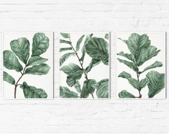 Aesthetic Room Decor Watercolor Greenery Poster Above Bed Botanical Wall Art Giclee Print FIDDLE LEAF FIG Tree