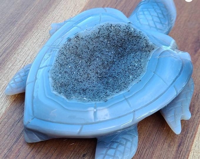 Sea Turtles Variety of Druzy Agate Turtles White Gray Blue