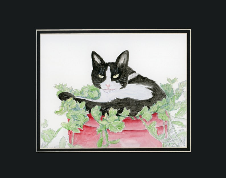 black and white cat portrait 8x10 matted to 11x14, Cat in Plant Original Watercolor by TexipamArt