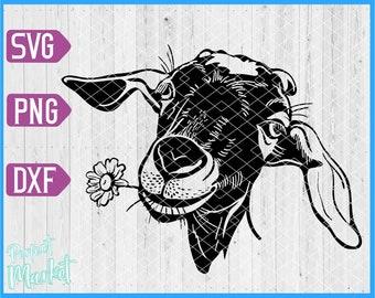Goat svg files,Goat farm animal svg,Goat head svg cricut,goat svg,goat dxf,goat shirt,goat cut files,goat vector,goat print