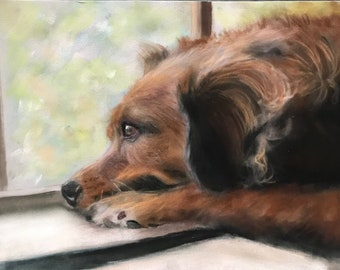 Dog by Window Original Pastel Painting Animal Lover Art Debbie Ritter