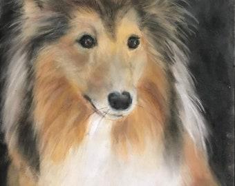 Sheltie Painting Shetland Dog Art Animal Art Debbie Ritter Pastel Artist