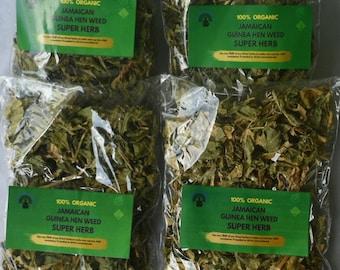 Jamaican Guinea Hen Weed , Petiveria Alliacea , Super Herb