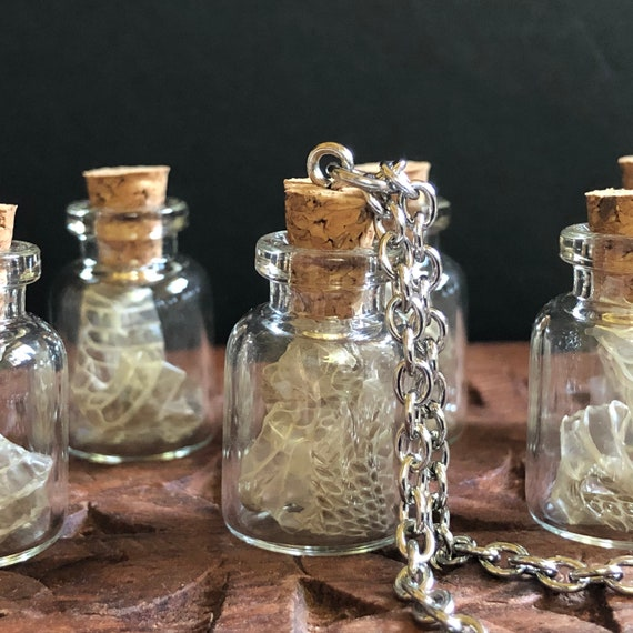 Snake Shed in Vial -Also available as a snake shed necklace- just add a chain before checkout.