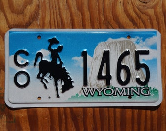 Cowgirl Barrel Racing Rodeo Western Equestrian License Plate Car Truck Tag