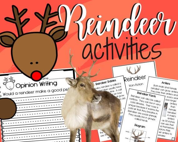 Reindeer Activities: Craft Book and Writing/ Printable/ Fun