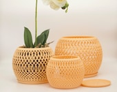 BOMI Orchid Pot - Designed to keep your orchids happy