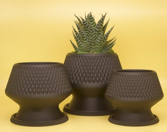 BUO Planter - Cute planter Designed and Sustainably made by Alté