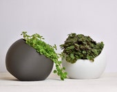 Tilted Sphere Planter, rounded pot, indoor plant pot, modern, indoor plants, minimalist, cascading plants, trailing plants, eco-friendly