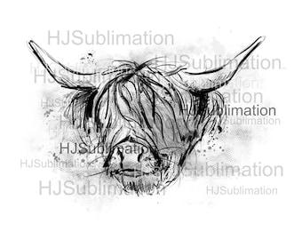 Highland Cow PNG.Sublimation designs.Digital download.