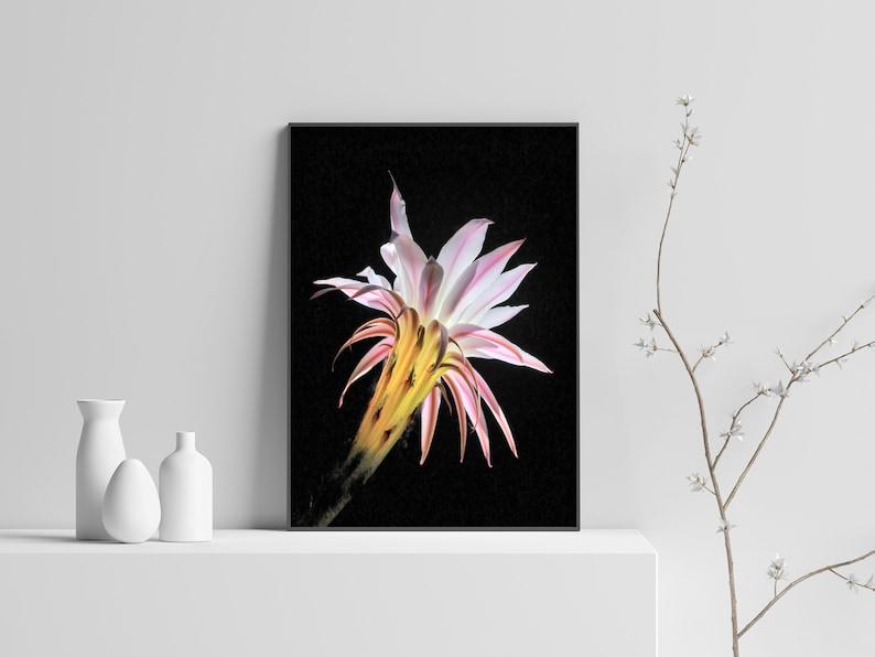 Cactus Flower Art Print,Boho Wall Decor,Cactus Decor,Botanical Wall Art Print,Desert Cactus Print,Printable Wall Art,Downloadable Print