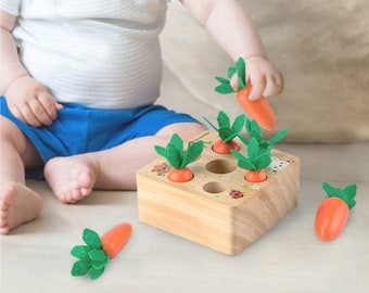 Montessori Wooden Carrot Sorting Puzzle, Preschool Learning Fine Motor Skill for toddlers