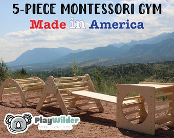 The PlayWilder Gym - 5 Piece Montessori Gym