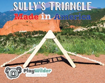 Sully's Triangle - From PlayWilder - Made In America
