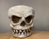 Bone head | Hand made unique sculpture on a Terra-cotta planter | 10cm planter | scary home decor