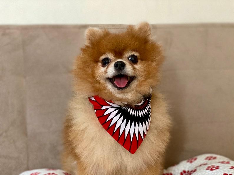 African print Dog Bandana \u2022 Pet Neckwear \u2022 Pet Bandana \u2022 Pet Accessories \u2022 Ankara print Dog Bandana